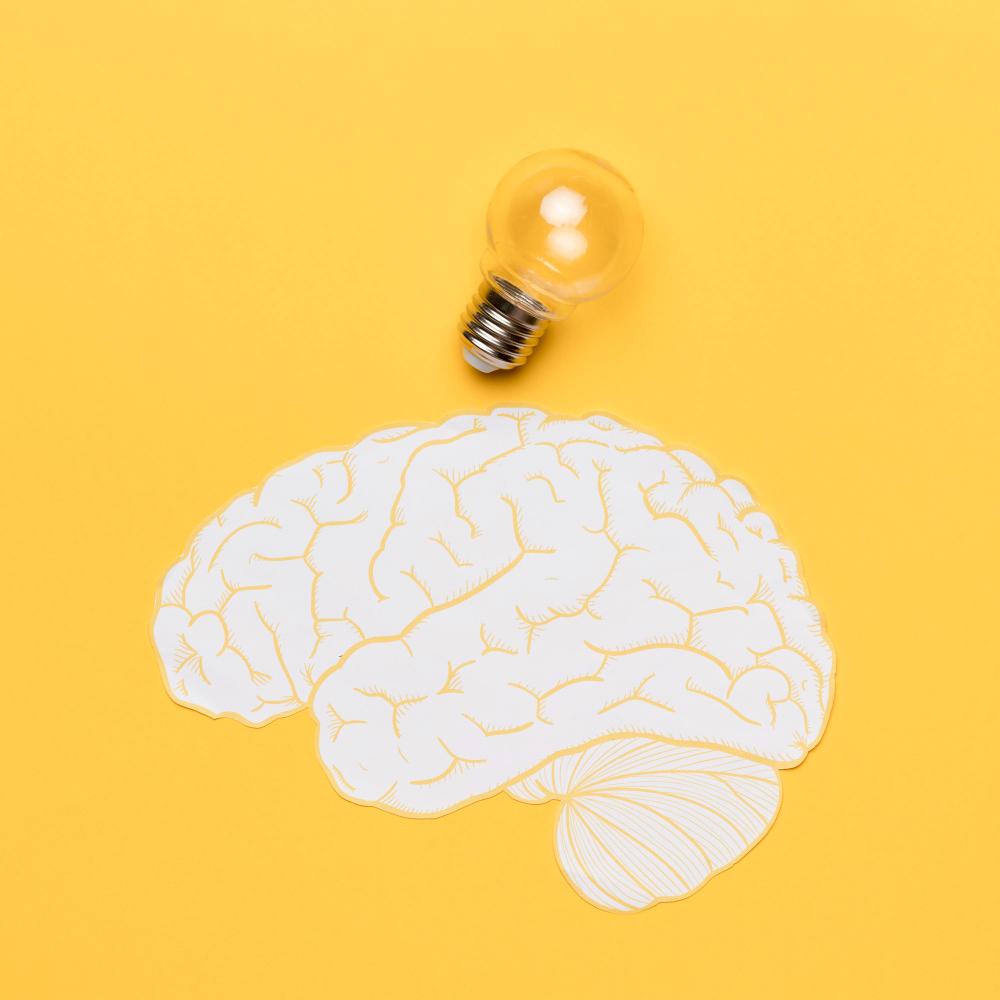 الدماغ والجهاز العصبي