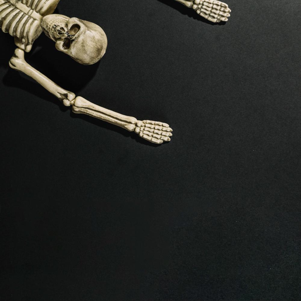 عظام ومفاصل